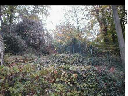 Natur pur! Hang-Grundstück in Byfang mit freiem Blick auf die Ruhr.
