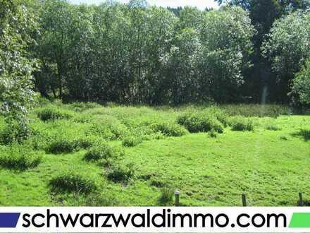 Attraktives Grundstück in Menzenschwand zu verkaufen