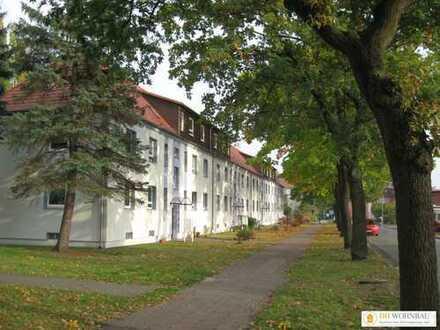 Helle, geräumige und modernisierte 3-Zimmer Wohnung in Wittenberge