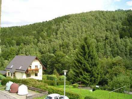 Sanierte 3-Zimmer-Wohnung mit Balkon in Scharfenstein
