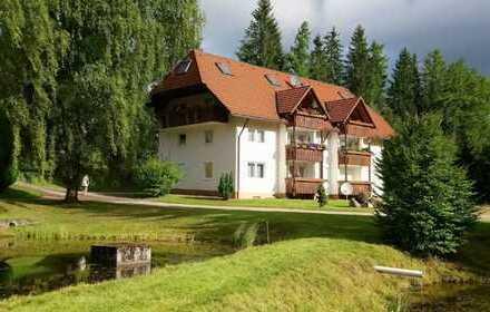 Schöne ein Zimmer Wohnung in Breisgau-Hochschwarzwald (Kreis), Feldberg (Schwarzwald)