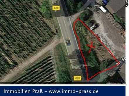 Top-Gelegenheit! Kleines Grundstück in Bosenheim zu verkaufen