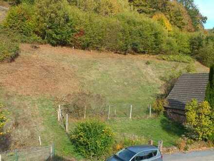 Baugrundstück in Oberzent-Schöllenbach