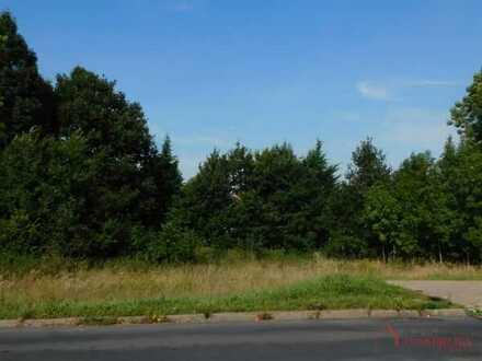 Baugrundstück für 1-2 Familienhaus, Doppelhaus oder Mehrfamilienhaus in Pritzwalk