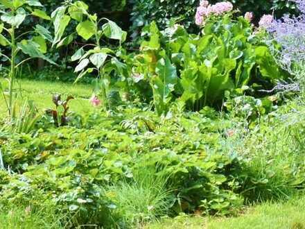 Von privat: schönes Mehrfamilienhaus mit Garten