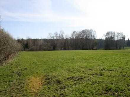 Landwirtschaftliche Fläche in Englmeng/Landkreis Ebersberg