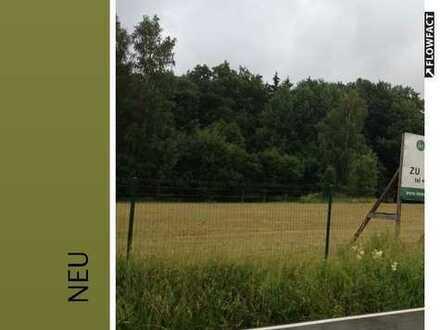 Die letzte grosse Grünfläche in Chemnitz-Adelsberg