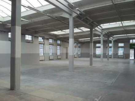 LOITZSCH IMMOBILIEN! TOP-Produktionsfläche im Dresdner Norden zu vermieten