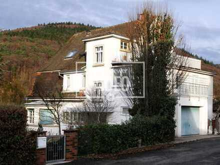 3,5 Zimmer Wohnung mit Garten und tollem Ausblick am Waldrand von Heidelberg Handschuhsheim