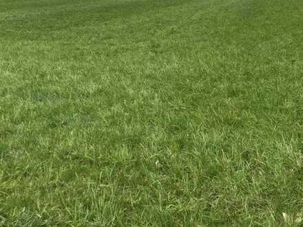Brück Immobilien - 7 diverse landwirtschaftliche Flächen im Umkreis Weilheim an der Teck