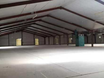 bis zu 2.780 qm Lagerhalle mit 155 qm Büroflächen günstig zu vermieten (auch Teilbereiche möglich)