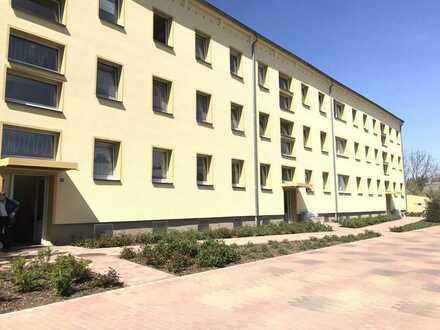 Wohnung in Grimmen mit 3 Zimmern zu vermieten + 500€ Umzugskostenhilfe