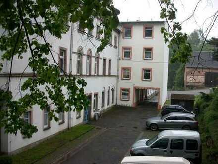 Freundliche, neuwertige 2-Zimmer-Wohnung in Hohenstein-Ernstthal