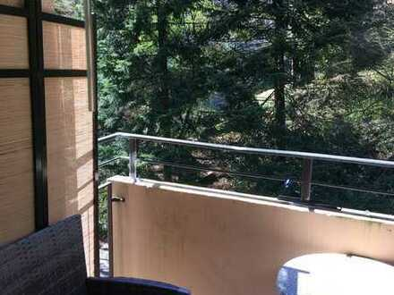 Attraktive 1-Zimmer-Wohnung mit Balkon und Einbauküche in Calw (Kreis)