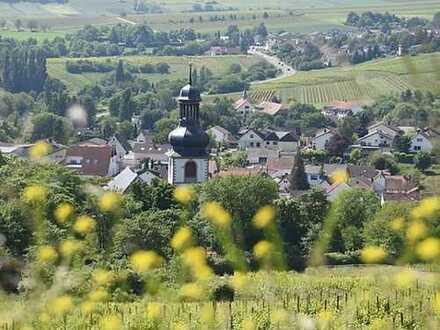 Schlüsselfertige Doppelhaushälfte in Jugenheim, Feldrandlage, Aussicht auf die Weinberge