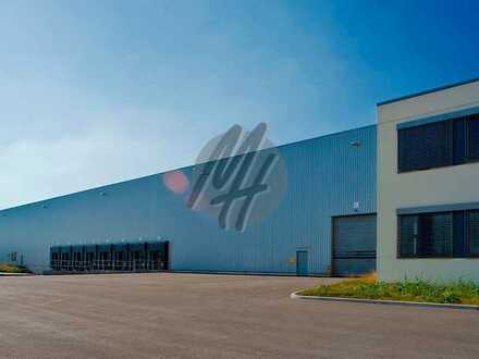PROVISIONSFREI ✓ LOGISTIK-NEUBAU ✓ 50.000 m² / teilbar ✓ viele Rampen ✓ 12 m Höhe ✓