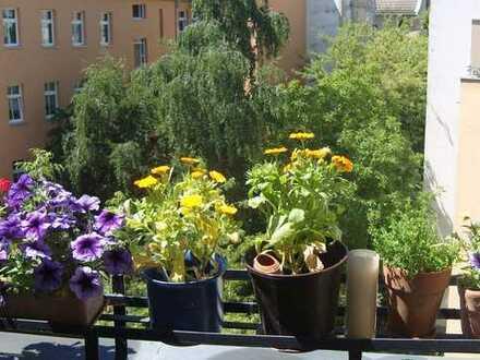 Möblierte, helle, ruhige Wohnung mit Balkon in perfekter Lage (Erstbezug nach Sanierung)