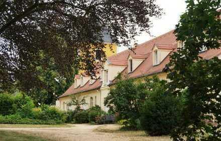 Herrlich grüne Umgebung im Schloss Nischwitz - 3 RW in kleinem Reihenhaus der Remise