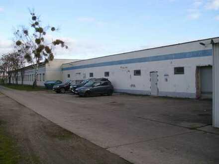 Lager- und Produktionsfläche in Dessau-Mitte!!!