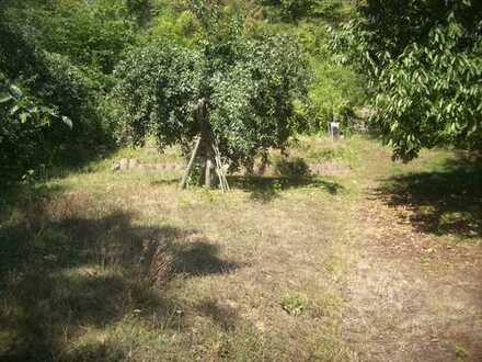 Gartengruindstück in Mühlhausen