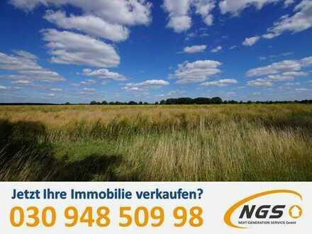 +++Grünland für die Zukunft im schönen Dahme-Spreewald+++