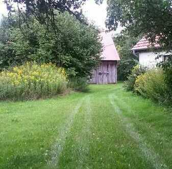 Naturbelassenes Grundstück m. Haus und Scheune, insgesamt ca. 12 ha