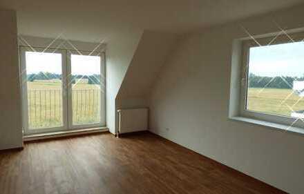 Erstbezug nach Sanierung - wunderschöne 4 Raum Wohnung zu vermieten!!!