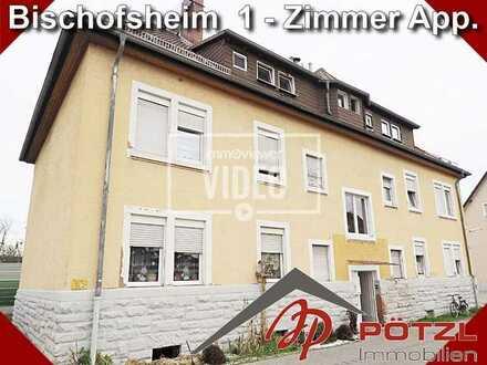 Praktisches, kleines Apartment in Bischofsheim