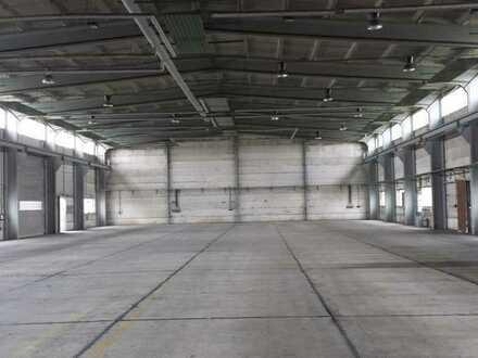 *PROVISIONSFREI* 1.800 m² Halle