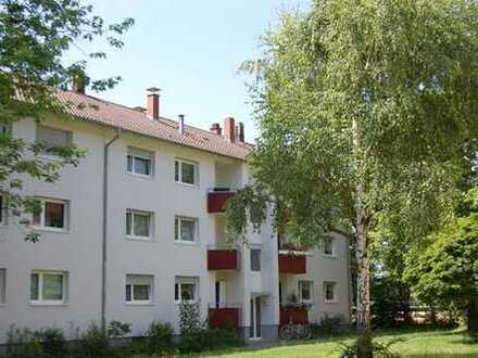 2 ZKB-Wohnung in Heidelberg-Pfaffengrund (BESICHTIGUNG SIEHE SONSTIGES)