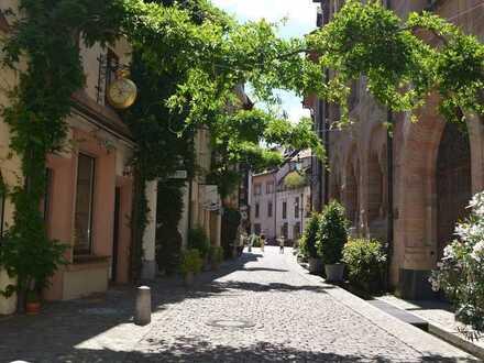 Zur Vermietung: schönes Ladengeschäft in beliebtestem Gässle Freiburgs