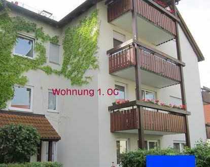 Modernisierte 1-Zimmer-Wohnung mit Einbauküche - Goldene Höhe Waldheim