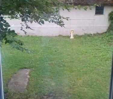 Hundefreundlicher Mitbewohner gesucht