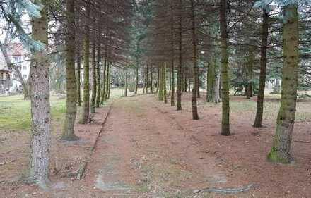 Wir suchen eine nette Familie für unser letztes Grundstück im Forstweg