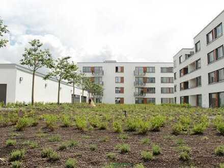 Neubau, 4-Z-Terrassen-Wohnung- Blick auf den begrünten Dachgarten