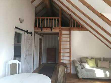 Schöne, geräumige zwei Zimmer Wohnung in Lörrach (Kreis), Rheinfelden-Minseln (Baden)