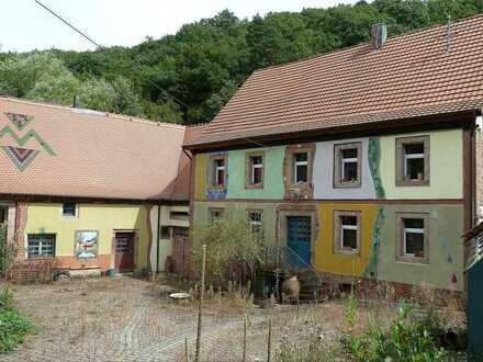 Historische Künstler-Mühle Einmalige Alleinlage
