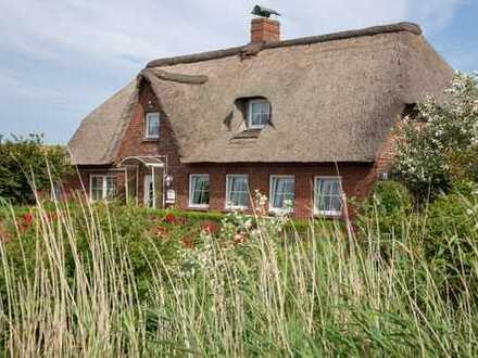 Reetdach-Haus mit Ferienwohnungen in traumhafter Einzellage