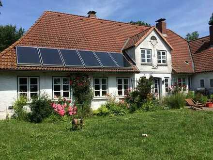Haushälfte von altem Bauernhaus, Alleinlage Eiderstedt/Nordsee