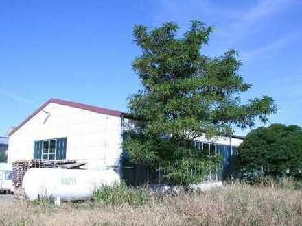 Ausstellungs- und/oder Lagerhalle am Stadtrand von Gera