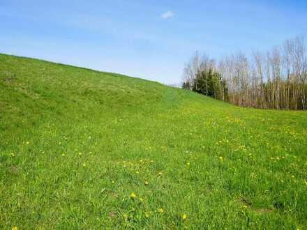 Grünland! Landwirtschaftliche Nutzfläche!