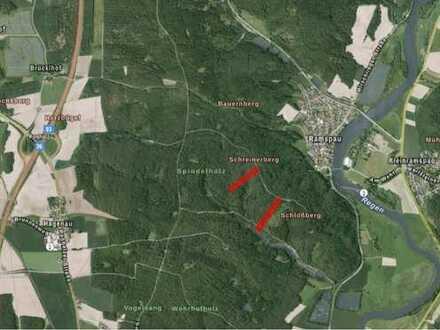 Waldgrundstück in Regenstauf/Ramspau zu verkaufen!!!