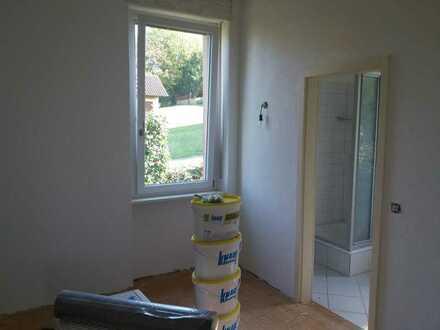 Vollständig renovierte 2-Zi.-Wohnung mit Balkon in Lahr/Schwarzwald