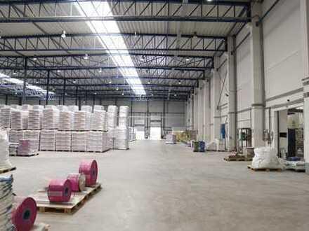 Büro- und Logistikkomplex in guter Lage l Rampen- und ebenerdige Andienung PROVISIONSFREI