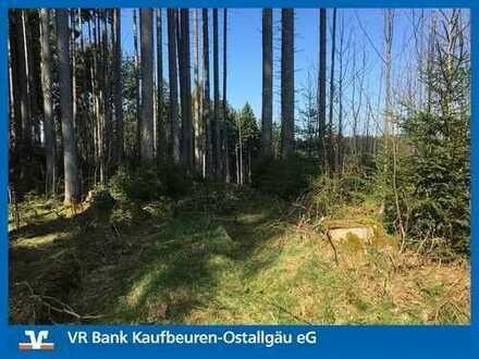 GELD VERGEHT - HEKTAR BESTEHT!!! Waldgrundstück in Wertach