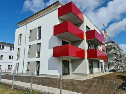 Moderne 4- Raumwohnung in zentraler Lage von Greifswald !!!