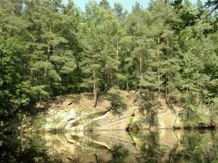 Grundstück im Wald mit Kranteich