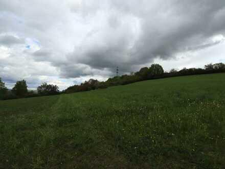 Landwirtschaftliche Fläche in Trebgast