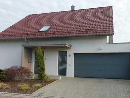 Modern Freestandig Single Family House