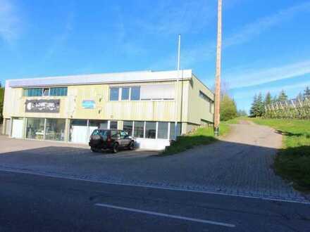 Große Lagerhalle / Werkstatt mit Rolltor, Sanitärräumen und Küche! Büroteil optional!